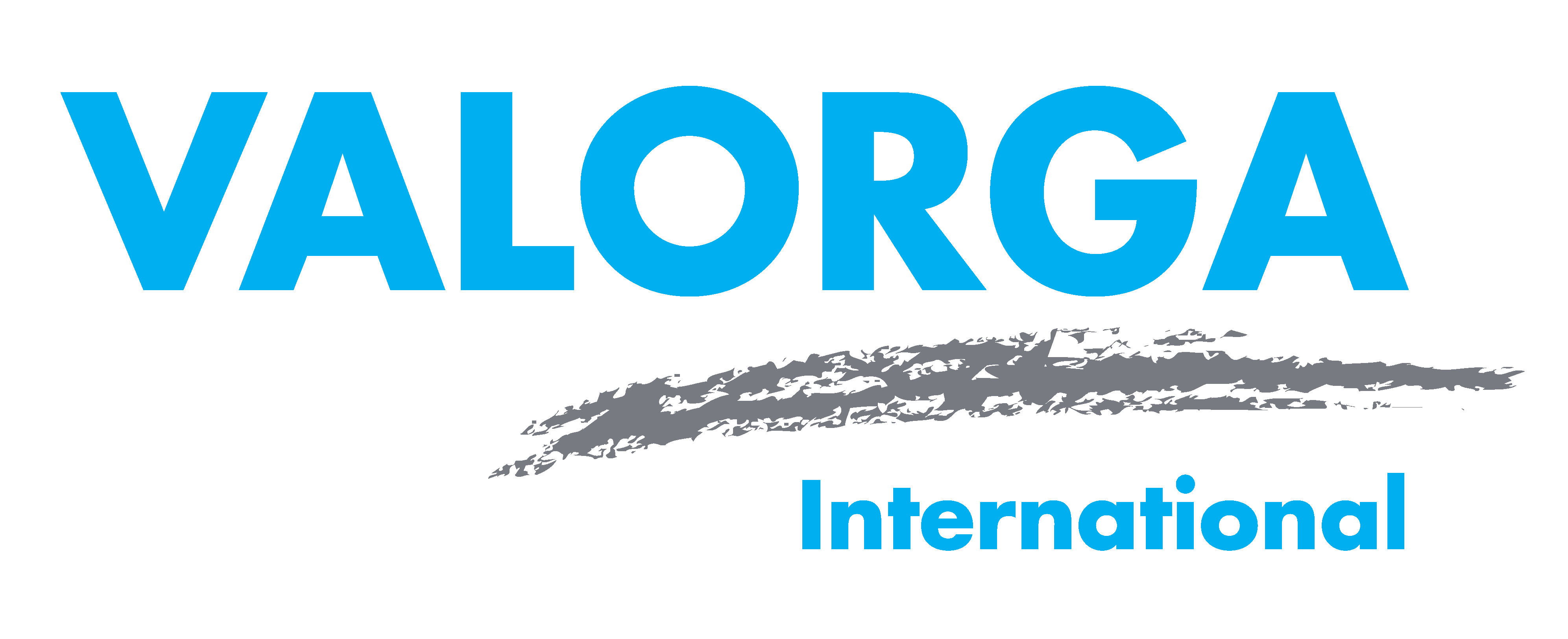 Valorga International